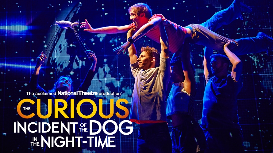 the curious incident of the dog in the night time 6 essay The curious incident of the dog in the night-time has 959,636 ratings and 37,555 reviews brad said: the prime reasons why i.